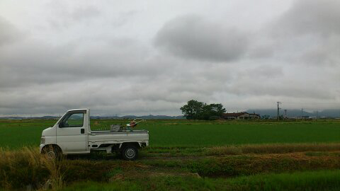 軽トラ,軽トラック,ホンダ,アクティ